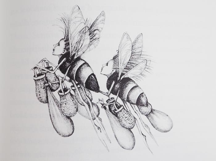 abejas_obrera_soinbehlally_illustration