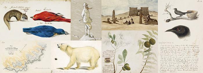 viajar-explorers sketchbook